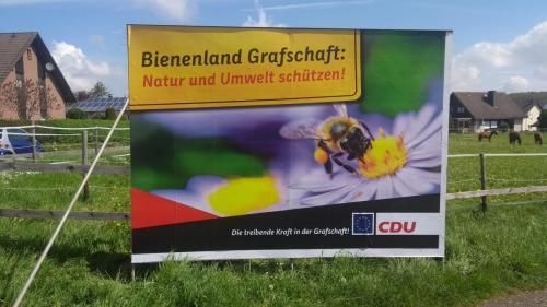 CDU will hier kein Bienen- sondern Bauland!