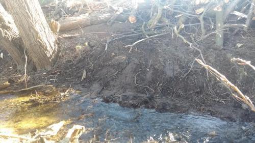 Einschwemmung wegen Auflockerung und fehlendem Bewuchs