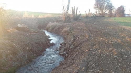 Biotop erheblich beschädigt